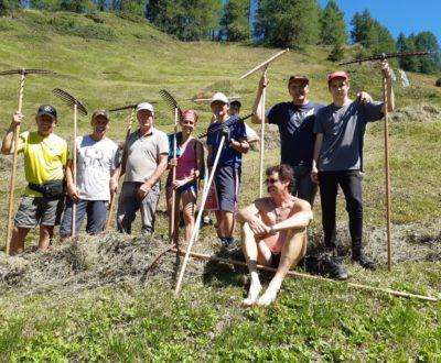 Erntehelfer in Südtirol, Erholung in der Natur, Sinnvoller Urlaub