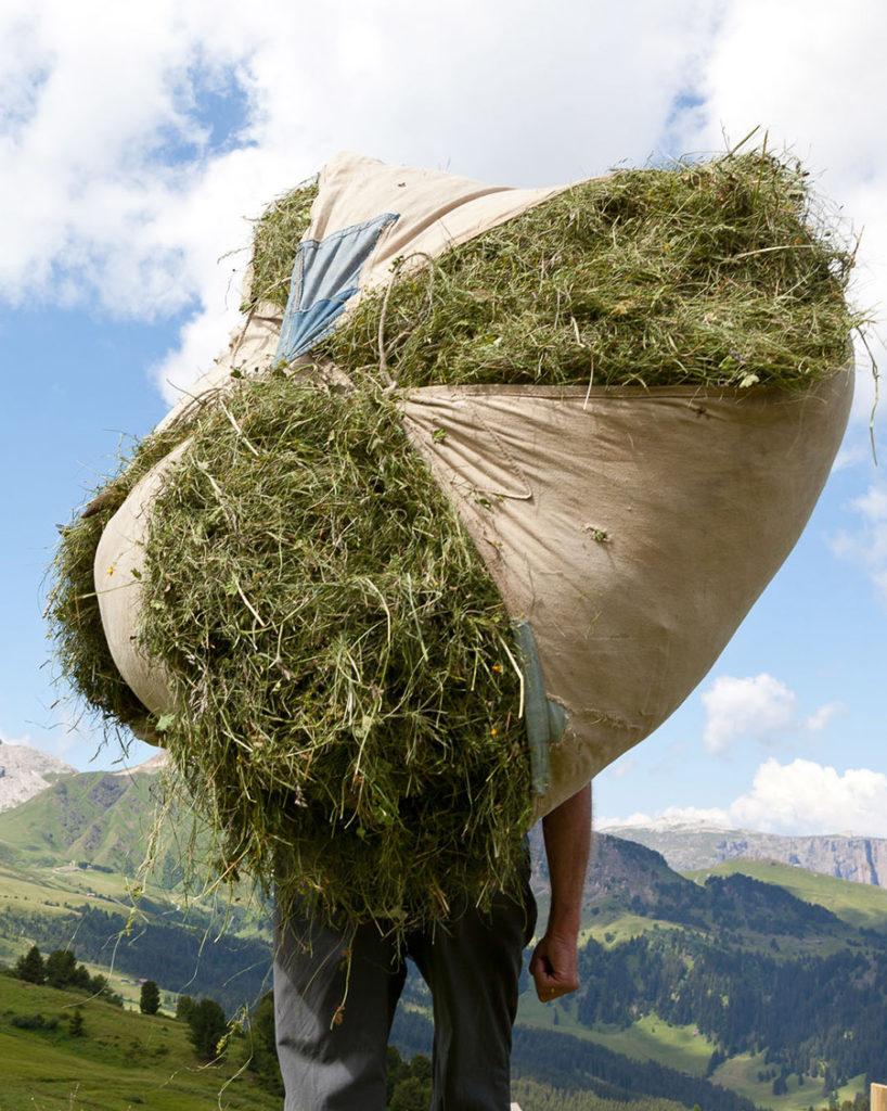 Südtiroler Tradition, Wellnes mit Bergwiesen Heu
